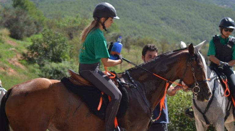 Fin de semana para aficionados a la hípica y amantes de los caballos en Ademuz