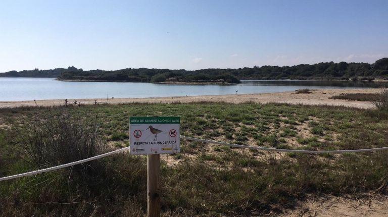 El Ayuntamiento de Valencia promueve la protección del Estany de Pujol y su fauna